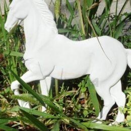 Модель Нового Коня